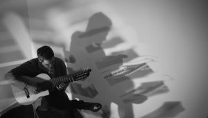 Discover The Mysterious Multi-String Guitar. A Song Without Words